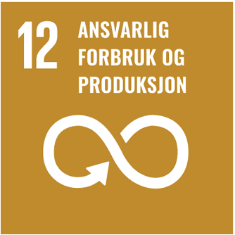 Ambera bærekraftsmål 12
